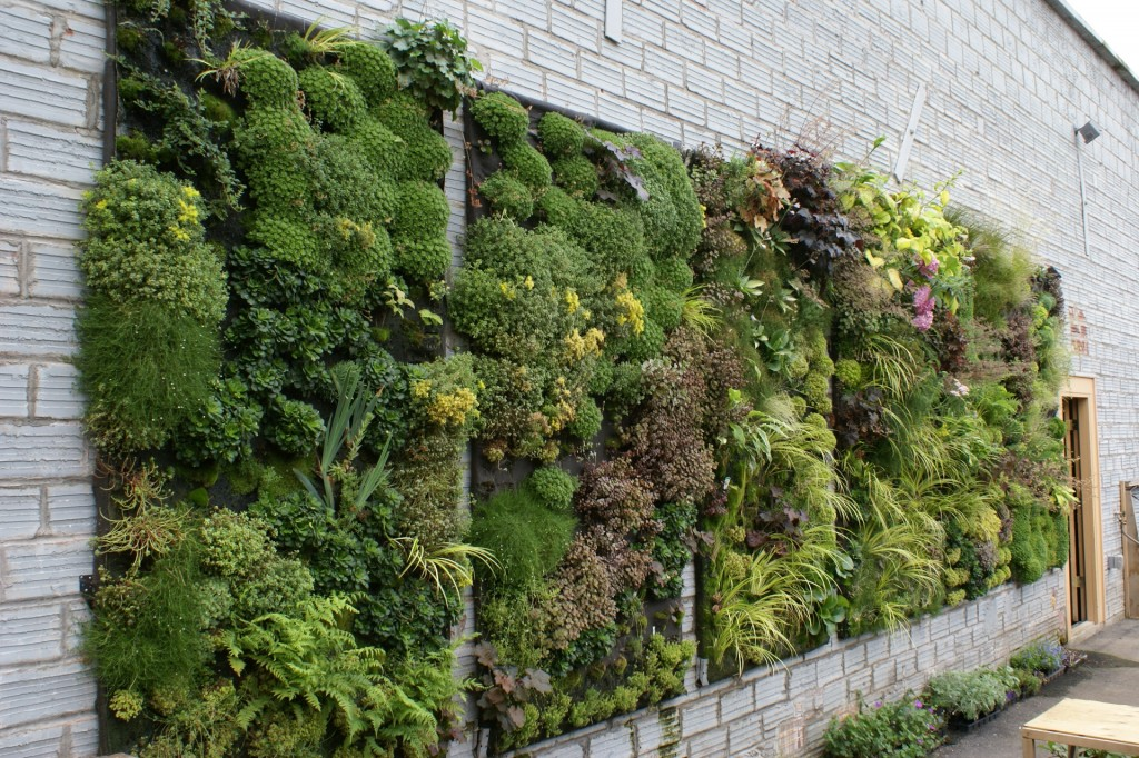 50 best Wall Garden Design applicative vertical garden
