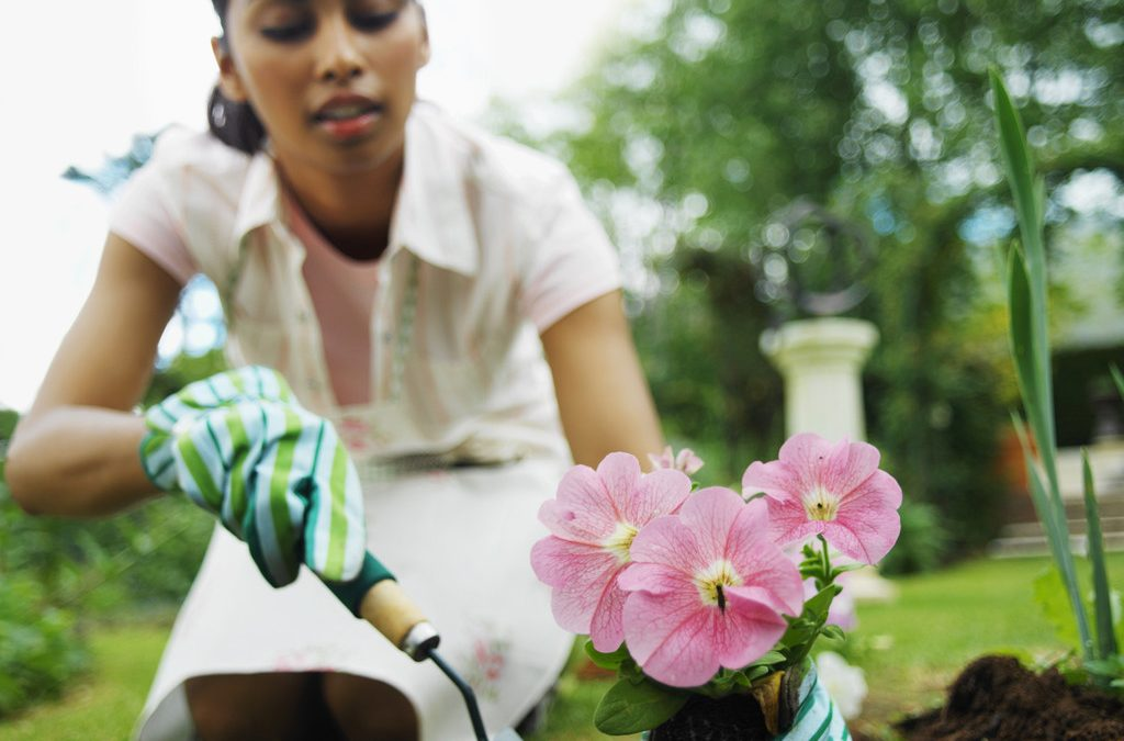 For Great Advice On Planting Flowers, Try These Great Tips!